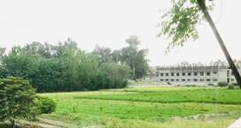 Agriculture land near main road.