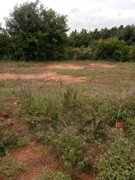 Selling 30x50 plot in Siddartha nagar, Tumkur