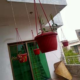 Hanging pots available for sale