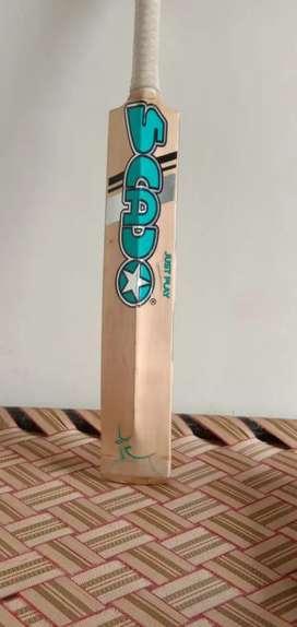 Cricket bat used bat