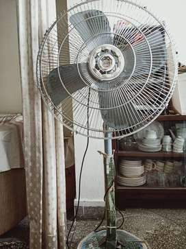 Pedestal fan for sale