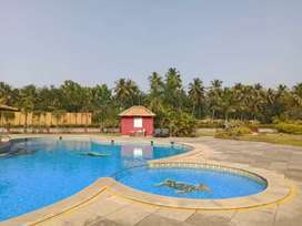 New 3 bhk flat for sale in a  peaceful location  in Goa velha