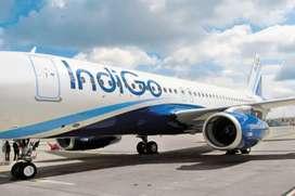 Congrats, Indigo Airline Gives Opportunity For Make future .  Indigo i