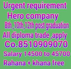 URGENT REQUIREMENT HERO COMPANY