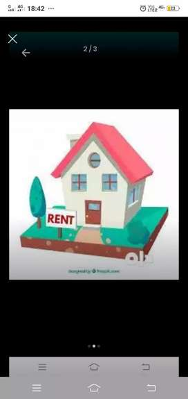 Availabal all types off makan and rental shop gala ro house flat
