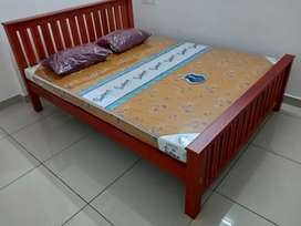 New family cot and matress set home delivery.8O784)call(565O4