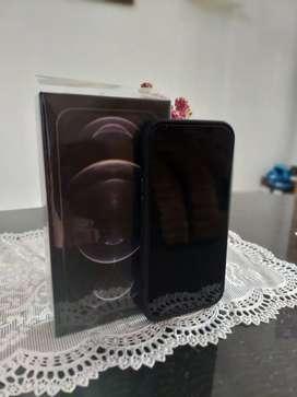 Dijual Iphone 12 Pro Max Graphite Colour 256GB
