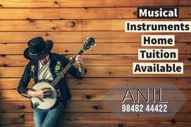 Musical instrument home tuition available