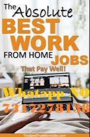 Work From Anywhere For Big Company With Big Salary