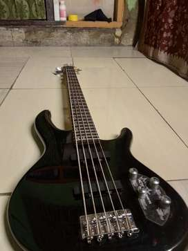 BASS CORT ACTION V PLUS 5 string