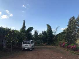 Chikmagalur Farm Land with HOUSE