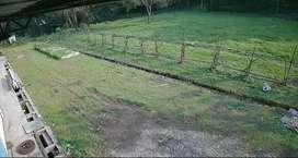 Disewakan tanah di Karawang Barat - Teluk Jambe