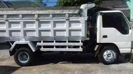 Dumb truk elf macan 2010