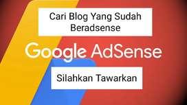 Cari Blog Approve Google Adsense