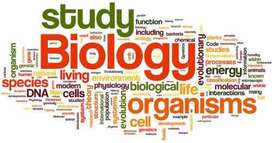 Biology home tutions