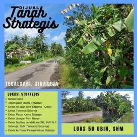 Tanah Dijual Sidareja, Tegalsasi strategis