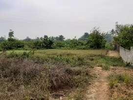 Tanah premium celentang cocok untuk perumahan
