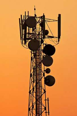 Bumper Hiring available in Tower company
