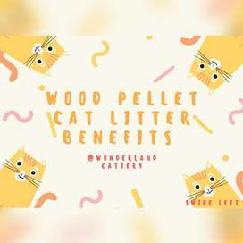 Wooden pellet cat litter
