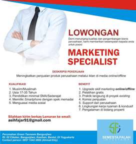 Marketing Special