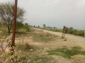 Raiwind Kasur Road 32 Kanal Land  6-10-16 Kanal For sale