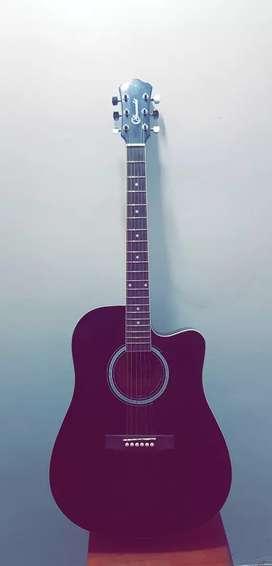 Granada Professional Acoustic Guitar