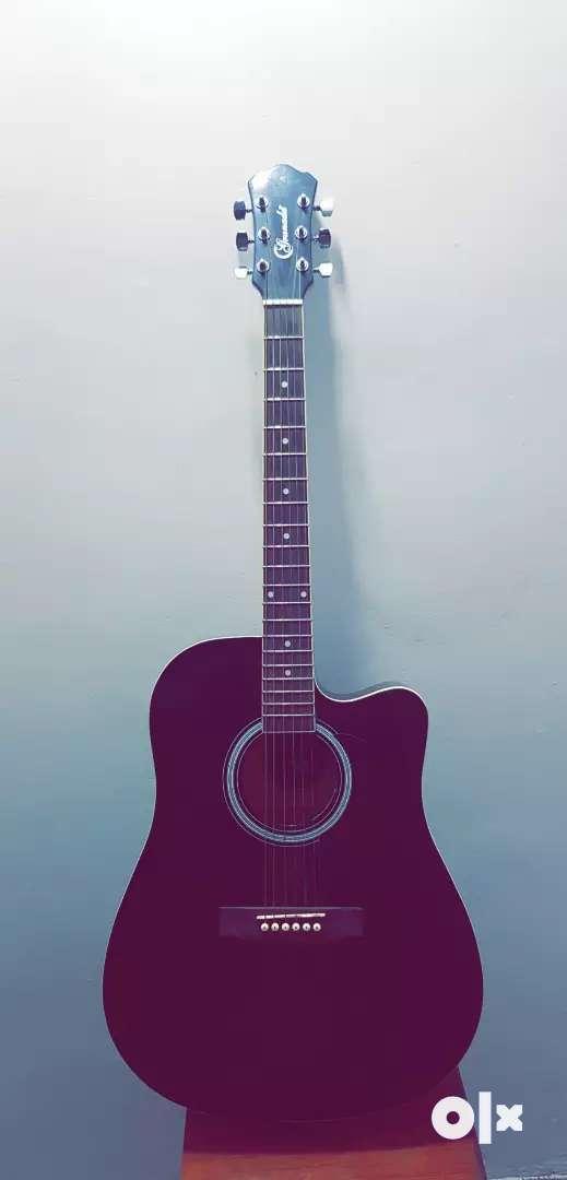 Granada Professional Acoustic Guitar 0