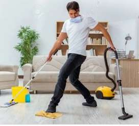 I need a boy for house work