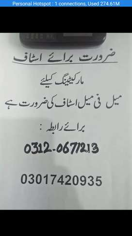 Required stasf for mall sale oficer male nd female