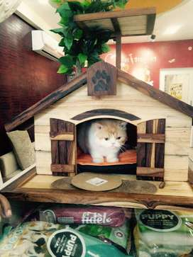 Personalized Wooden House for Dogs and Cats