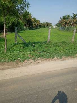Land in Nasiyanur