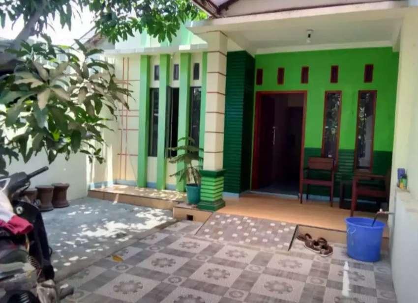 Rumah kampung di Gawok 0