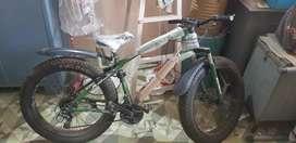 BEINAIDI cycle