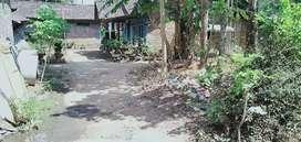 Tanah pekarangan murah tegalarum Borobudur