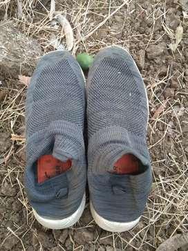 Shoes kangaroo
