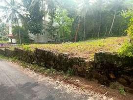 Residential plot 12cent Indhirajinagar pullannivila