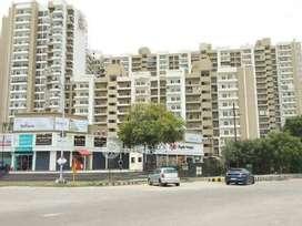 Plots बेहतरीन लोकेशन मेट्रो के नजदीक Sec 143 Noida Expressway.