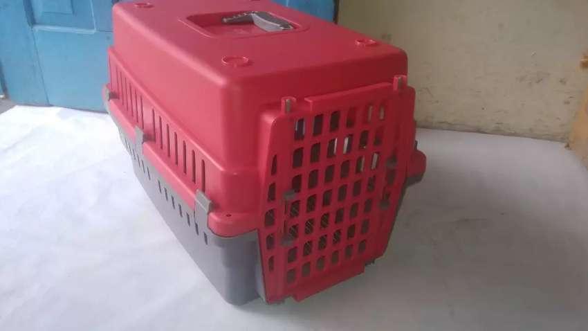 Pet Cargo Murah 0