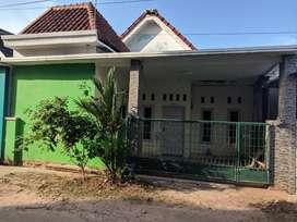 Rumah dikontrakkan