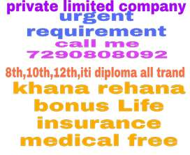 Urgent requirement for private limited