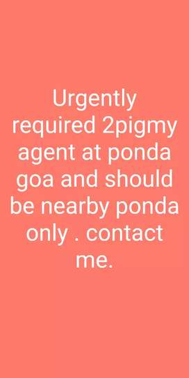Need Pigmy agent for cooperative society