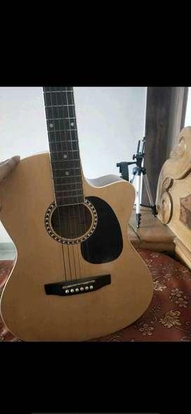 Guitar Kaps st-10ac