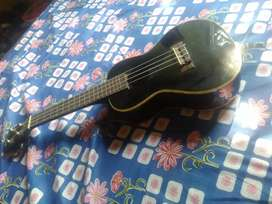 Lankai ukulele with its cover in black