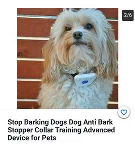 "Coopers Dogs ""STOP BARK""  imported collar available."