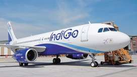 Male and female apply for ground staff in Indigo Airlines