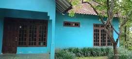 Rumah murah dgn tanah yg luas