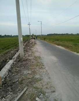 Tanah murah  prospek untuk perumahan di krian Sidoarjo Jatim