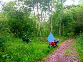 Tanah Murah di Purwobinangun dekat Area Wisata di Kaliurang