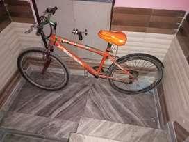 Cycle ranger cycle