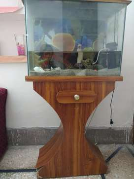 Wooden Aquarium including heater, light and accessories.